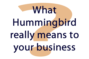 What does hummingbird really mean to your business